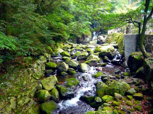 水神社の豊かな水