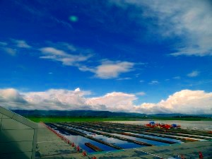 旭川空港の空